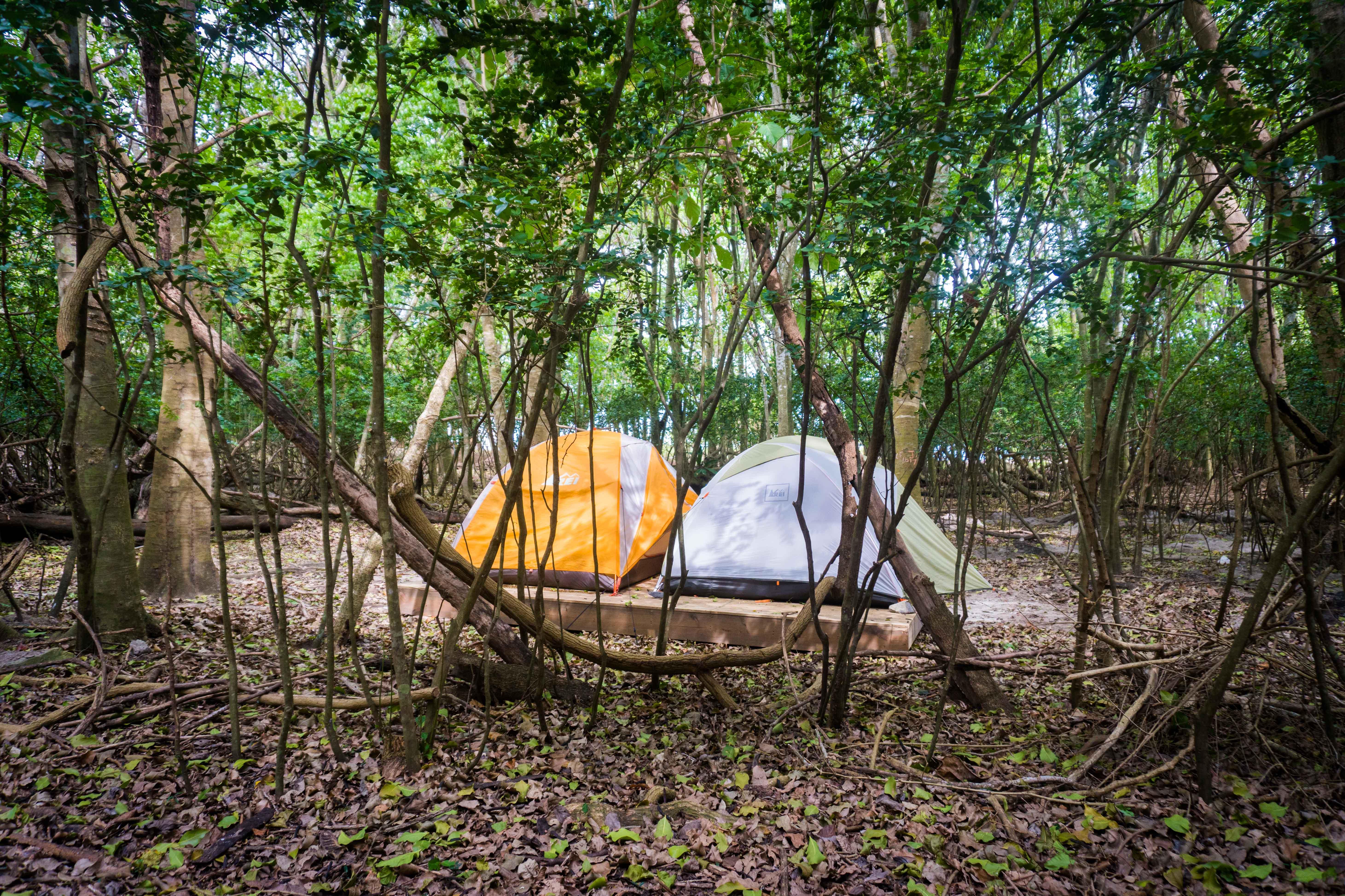 CAMPING ($39 u2013 $75) & Cinnamon Bay Resort St John: Review - Moxie u0026 Epoxy